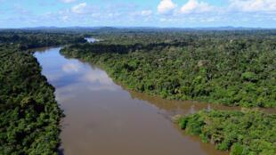 A Floresta Nacional do Jamanxim, no oeste do Pará, está ameaçada