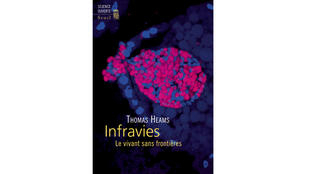 Couverture - Infravies - Thomas Heams.