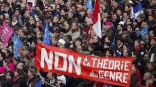 """No to gender theory!"" reads a banner on an anti-gay marriage demonstration in February"