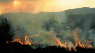 Un feux de brousse dévastateur à Madagascar.