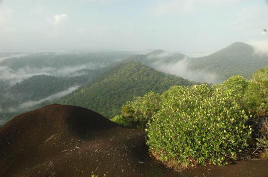 Le site protégé de Nouragues en Guyane (2007)