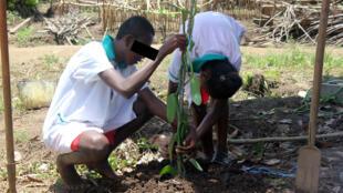 Davila et Dorien travaillaient il y a encore quelques mois dans les plantations de vanille. Au centre de formation professionnelle d'Andapa, ils retrouvent leur quotidien d'adolescents. Ici ils reçoivent un enseignement technique.