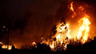 O maior foco do incêndio, perto da localidade de Sertã, na região de Castelo Branco, Potugal.