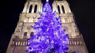 کاج نوئل در مقابل کلیسای نوتردام پاریس