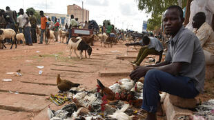 Un vendeur de poulet sur un marché burkinabè (photo d'illustration).