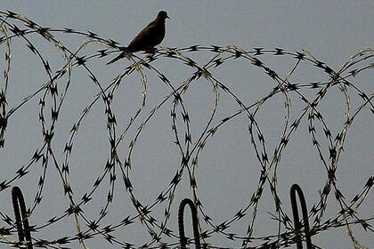 Подписан указ об амнистии более чем 800 заключенных в Туркменистане 14/02/2014