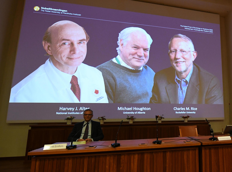 Лауреатами Нобелевской премии по медицине стали британец Майкл Хаутон и американцы Харви Алтер, Чарльз Райс за открытие вируса гепатита С.