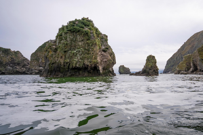Imagen publicada por Greenpeace cerca de la playa de Khalaktyr, en la península de Kamchatka, el 5 de octubre de 2020
