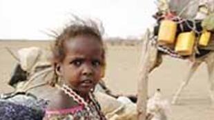 15 millions de personnes seraient menacées, si l'aide humanitaire n'arrive pas à temps en Ethiopie.