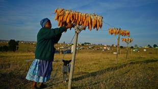 La nouvelle loi doit permettre de garantir la sécurité alimentaire et palier l'injustice foncière de colonialisme et d'apartheid.