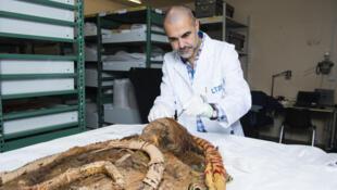 Prélèvement de cheveux sur la momie dorée copte d'Antinoé, conservée dans les réserves du MDC Lyon.
