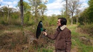 guignard - oiseau - fauvette