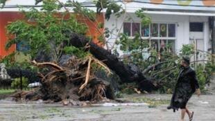 Guguwar Typhoon Haiyan a Pilipinu