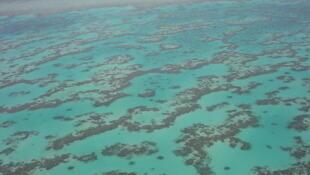 Vista aérea da Grande Barreira de Corais, em Queensland, na Austrália.
