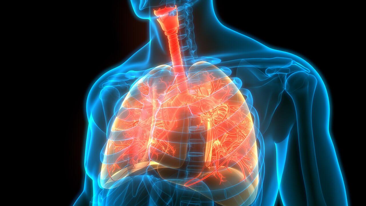 La BPCO, maladie chronique respiratoire, pourrait devenir la 3e cause de mortalité dans le monde d'ici 2030 d'après l'OMS.