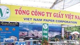 Tổng công ty Giấy Việt Nam có lợi nhuận rất thấp - DR