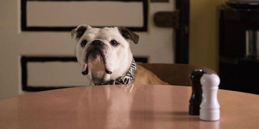 Nelly interpretando Marvin, em cena de Paterson, de Jim Jarmusch.
