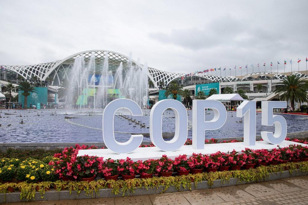 COP 15 在雲南省昆明舉行. (Photo by STR / AFP) / China OUT