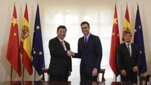 លោក Xi Jinping និងលោកនាយករដ្ឋមន្ត្រីអេស្ប៉ាញ Pedro Sanchez ចាប់ដៃគ្នា នៅទីក្រុងម៉ាឌ្រីត ថ្ងៃទី២៨វិច្ឆិកា ២០១៨