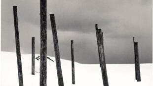 «Seven Posts in Snow» (Rumoi, Hokkaido, Japan, 2004).
