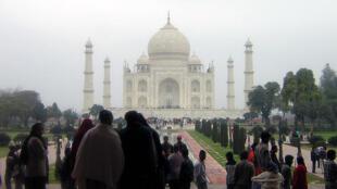 Des hordes de singes rôdent dans le complexe du Taj Mahal et les gérants du site peinent à les empêcher de harceler les visiteurs.