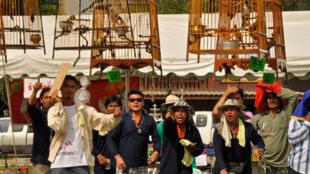 Les captations sonores des concours de chants d'oiseaux en Thaïlande ont été réalisées par Stéphane Rennesson et d'Emmanuel Grimaud