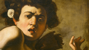 (Détail) Caravage, Michelangelo Merisi dit (1571 - 1610) Garçon mordu par un lézard 1594 Huile sur toile 65,8 x 52,3 cm Florence, Fondazione di Studi di Storia dell'Arte Roberto Longhi