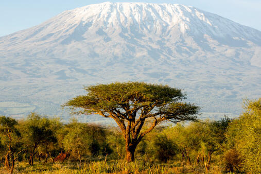 Tsaunin Kilimandjaro en Tanzanie.