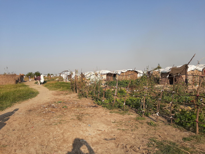 Un site temporaire dans la région de Bentiu au Soudan du Sud.