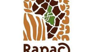 Logo du Réseau des aires protégées d'Afrique centrale.
