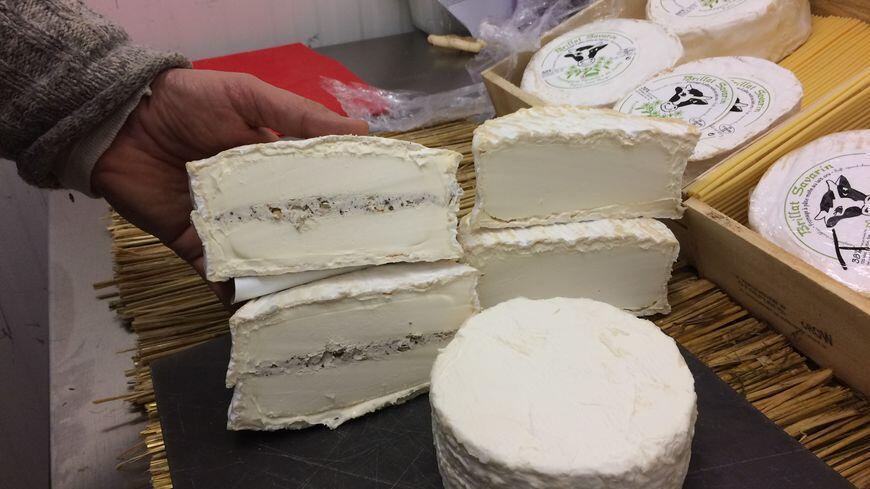 法國奶酪極品: 布里亞-薩瓦蘭(Le Brillat-Savarin)