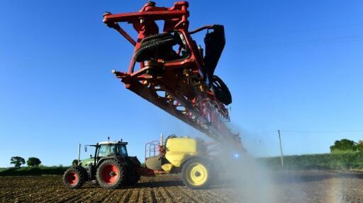 El Roundup de Monsanto hecho a base de glifosato es uno de los productos más usados contra la maleza en los cultivos.