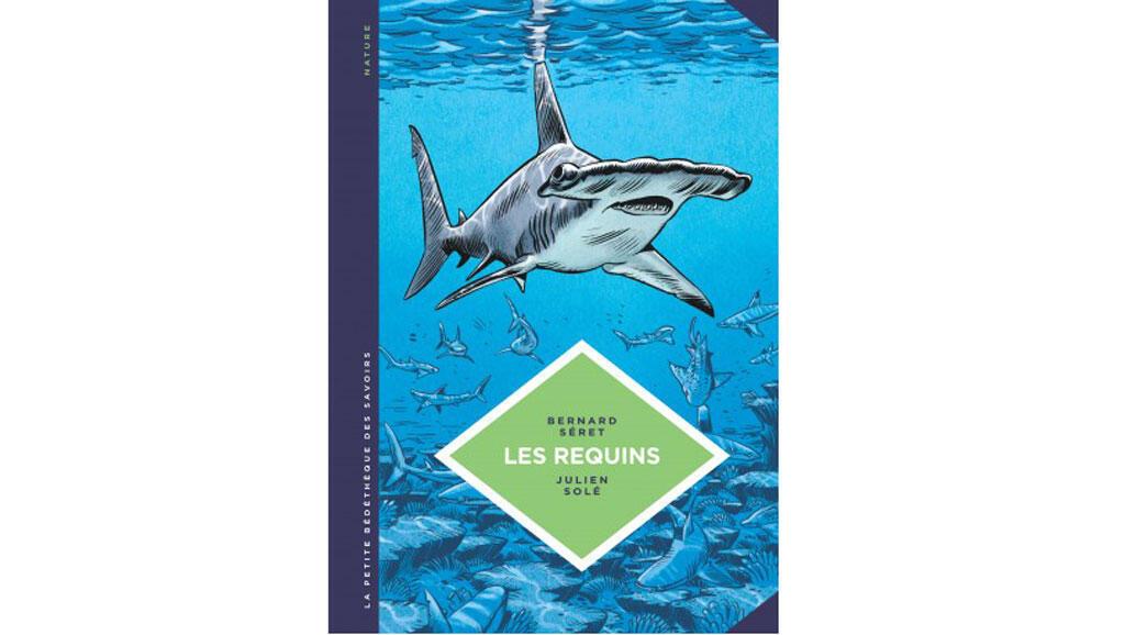 « Les requins. Les connaître pour les comprendre ».