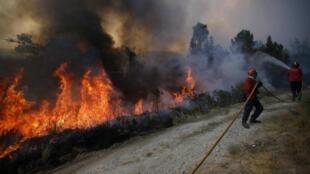 Les soldats du feu tentent de circonscrire les flammes à Covilha, le 24 août 2013.