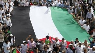 Турецкие манифестанты с палестинским флагом в Стамбуле 31 мая 2010