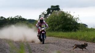 Paulo Gonçalves (Honda) continua na liderança do Rali Dakar.