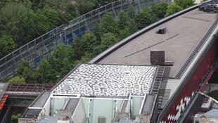 Lena Nyadbi's painting on the roof of the Musée du quai Branly