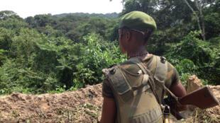 Un soldat congolais, devant une tranchée, protège le camp «Kabila». Face à lui, la forêt où se cachent toujours les ADF. Les rebelles ougandais n'auraient – eux - plus de camps permanents, selon l'armée, forcés au déplacement par les opérations militaires.