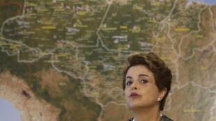 La présidente brésilienne Dilma Rousseff affirme rentrer en guerre contre le virus Zika.