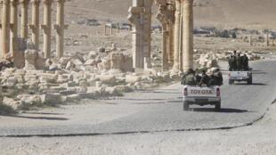 Des soldats de l'armée syrienne traversent la ville antique de Palmyre, le 1er avril 2016 (image d'illustration).