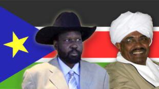 南部苏丹公投宣传画