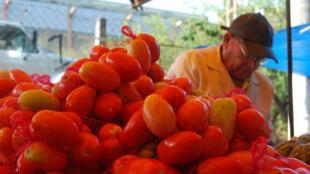 Alta dos preços do tomate virou símbolo da inflação elevada no Brasil.