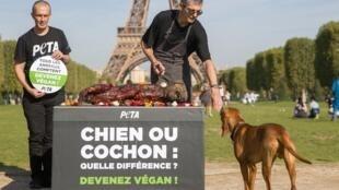 """Ativistas estão ao lado de uma grelha com uma efígie de um """"cão grelhado"""" com um cartaz que diz: """"Cão ou Porco, qual é a diferença - torne-se vegano"""" durante uma campanha contra a crueldade animal e em apoio ao veganismo no Champ-de-Mars em Paris, em 23 de"""