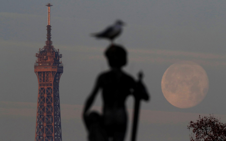 The Eiffel Tower earlier this week