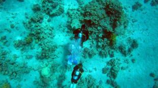 Des plongeurs en pleine découverte sous-marine aux abords d'Aqaba, en Jordanie.