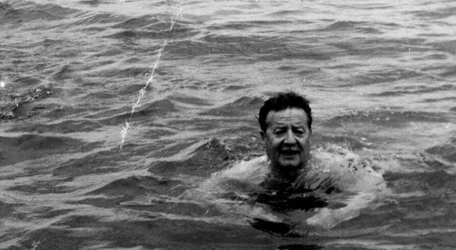 """""""Allende mi abuelo Allende"""" de Marcia Tambutti Allende."""