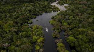 Segundo o jornal Le Figaro, fundos de investimento internacional poderiam salvar a Amazônia e teriam pressionado o governo de Jair Bolsonaro a mudar de tom.
