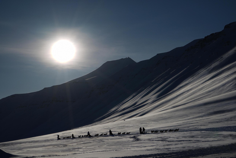 Un rapport officiel norvégien prévoit en effet une hausse des températures de 7 à 10 degrés d'ici à la fin du siècle dans cet archipel.