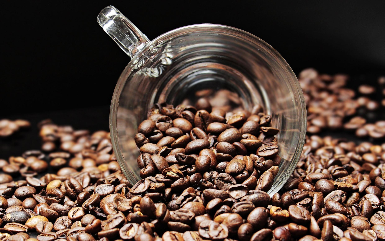 瓜地馬拉將於今年十月一日退出國際咖啡組織