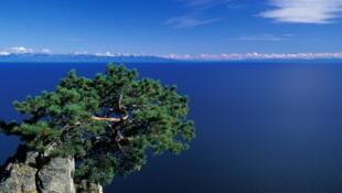 Situé au sud-est de la Sibérie, le lac Baïkal est classé en 1996 au patrimoine mondial de l'Unesco.
